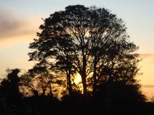 Irish dawn