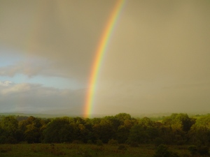 ROSCOMMON RAINBOW